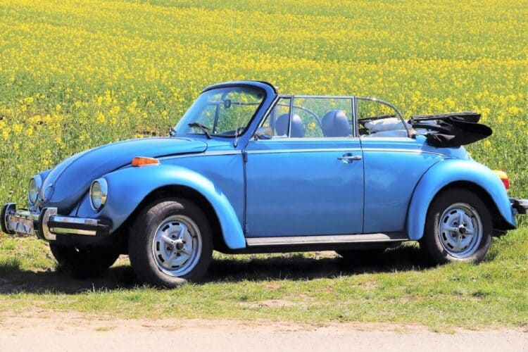 VW Käfer mieten in Flensburg